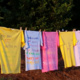 A picture of T-shirts created for the Clothesline Project at NC State.