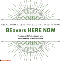 BEavers HERE NOW Guided Meditation Sessions
