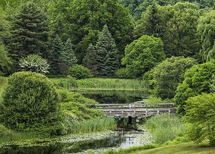 Jul 12, 2020: Sunday Arboretum Tour at F.R. Newman Arboretum