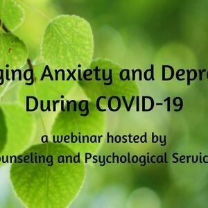 Managing Anxiety and Depression during COVID-19 - Kennesaw ...