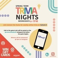 Connect the Ducks: Trivia Nights online