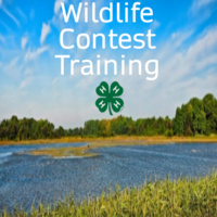 Wildlife Contest Training