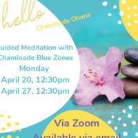 Blue Zones: 4/20 & 4/27 Guided Meditation at 12:30pm Via Zoom (available via email)