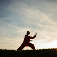 Virtual Tai Chi Yoga