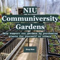 NIU Communiversity Gardens