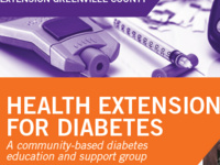 Health Extension for Diabetes- Online