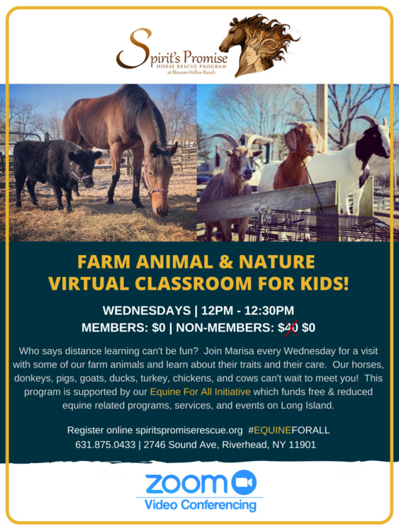 Farm Animals & Nature Virtual Classroom for Kids