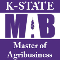 Webinar with MAB Current Students and Alumni
