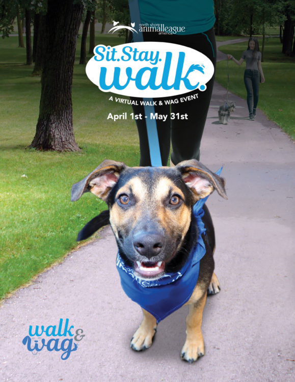 Sit. Stay. Walk. - A Virtual Walk & Wag Event