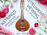 Springtime! String Time! Instrument Viewing