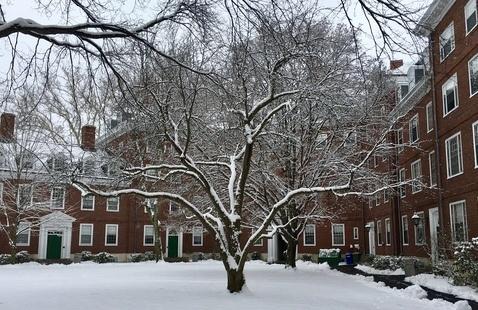 Harvard in the winter