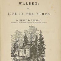 Why We Need 'Walden' Right Now