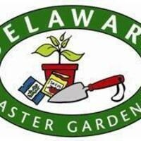 Gardening- Green Invaders