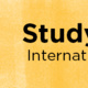 Study Abroad Pop-in Advising