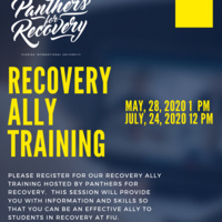 Virtual Recovery Ally Training