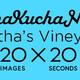 Virtual PechaKucha 20×20