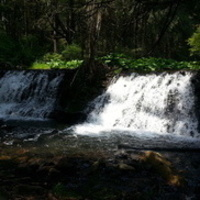 Beautiful Beltzville Hiking Series: Sawmill Trail