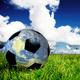 Green Sports Alliance Virtual Panel