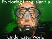 Exploring Long Island's Underwater World via Zoom