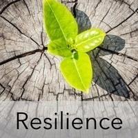Building Resiliency workshop