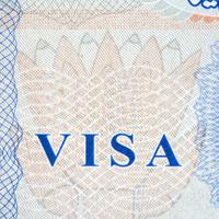 A Q&A for nonimmigrants in a virtual job market.
