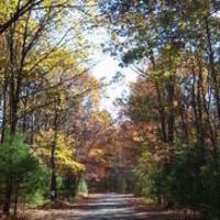 Beautiful Beltzville Hiking Series: Trinity Gorge Trail