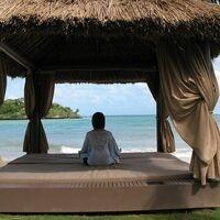 Free Virtual Tai Chi, Qi Gong and Meditation: June 2 to July 2