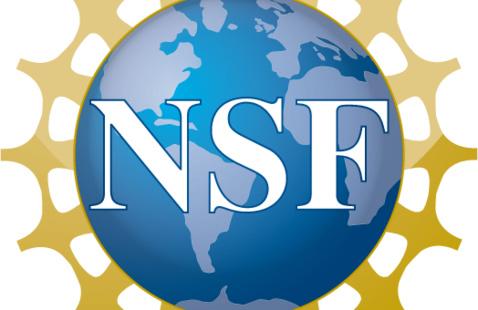 Zoom Walk-In Hours: NSF GRFP