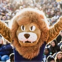 Consider giving to the Lion Athletics Unfinished Business campaign