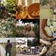 Nature as Inspiration Environmental Film Festival: Inhabit