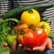 Webinar - Ask the Extension Expert: Grow Your Own Food