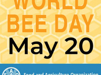World Bee Day, May 20, 2020. Sponsored by the FAO