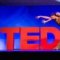 Talking Ted With the CTE