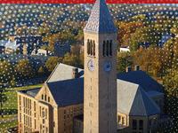 Cornell Virtual Reunion