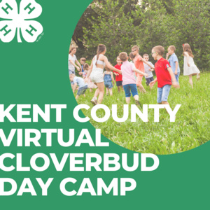 Kent County 4-H Cloverbud Virtual Day Camp June 29th to July 2nd