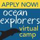 Ocean Explorers Virtual Summer Camp