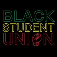 BSU and Alumni Meet-Up