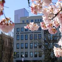 Virtual Information Session - Oregon Executive MBA in Portland