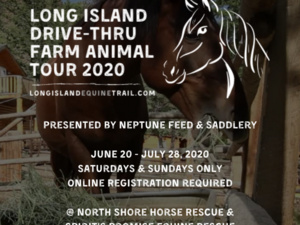 Long Island Drive- Thru Farm Animal Tour 2020