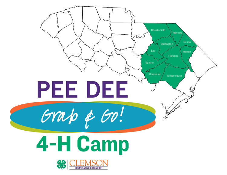 Pee Dee Region 4-H Grab & Go Camp Kit Registration