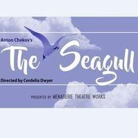 SOS Theatre Fest: The Seagull - MAINcast Interview - Virtual