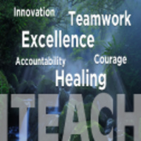 Virtual Values Week: Excellence in Action