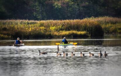 Take a Hike at Wertheim Wildlife Refuge