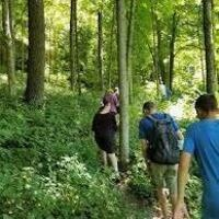 """Virtual Spoon it with Luann - Culinary Class  """" Foraging in the Forest"""""""