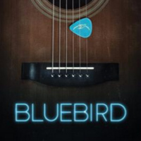 FILMUSIC Festival: Bluebird