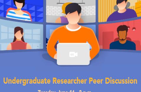Undergraduate Researcher Peer Discussion
