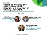 The Rights of Indigenous Peoples in Voluntary Isolation in the Context of COVID-19 and Beyond