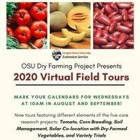 OSU Dry Farming Project Virtual Field Days