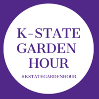K-State Garden Hour:  How to Choose Potting Media for Gardening Success