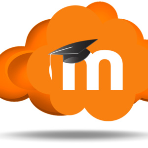 Tell me about Moodle Activities and Resources